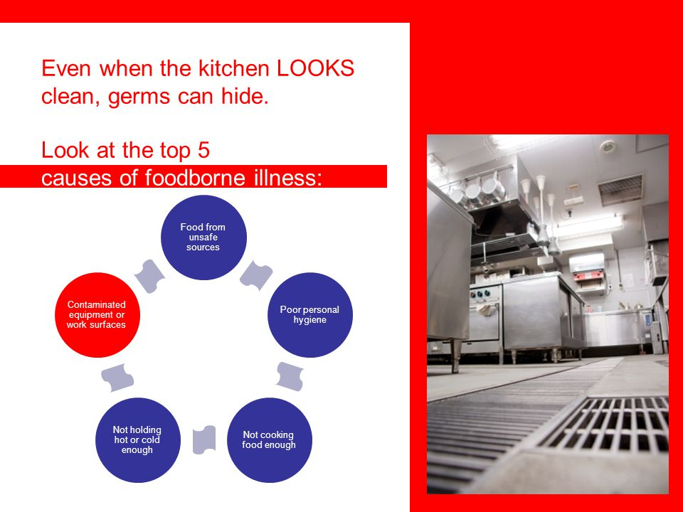 Even when the kitchen LOOKS clean, germs can hide.