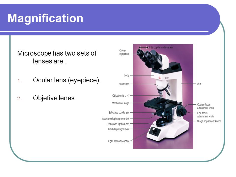 Magnification Microscope has two sets of lenses are :