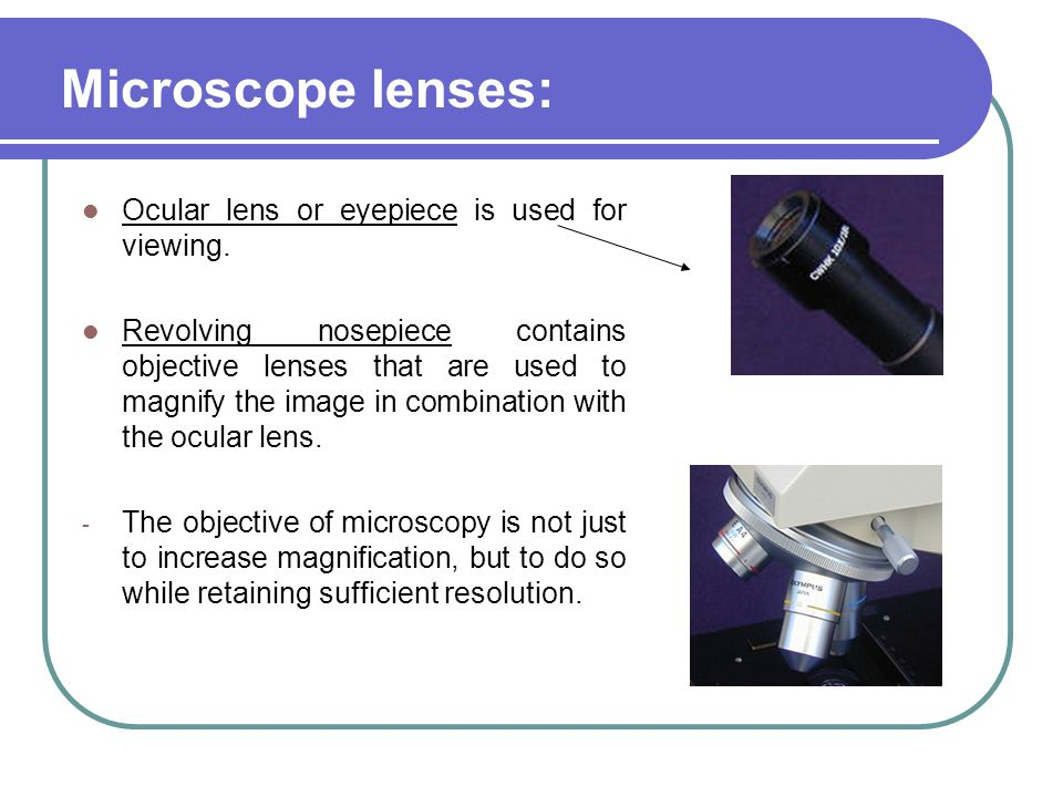 Microscope lenses: Ocular lens or eyepiece is used for viewing.