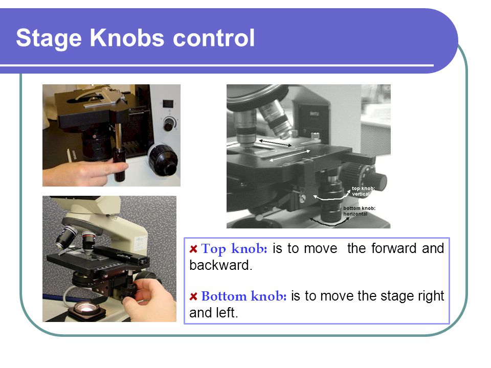 Stage Knobs control Top knob: is to move the forward and backward.
