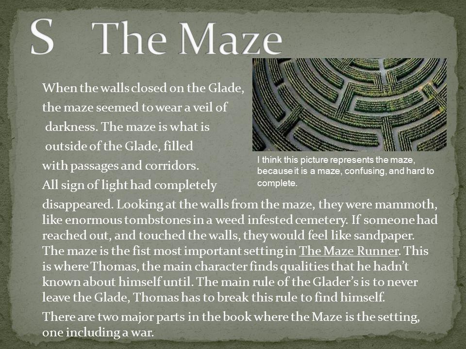 S The Maze