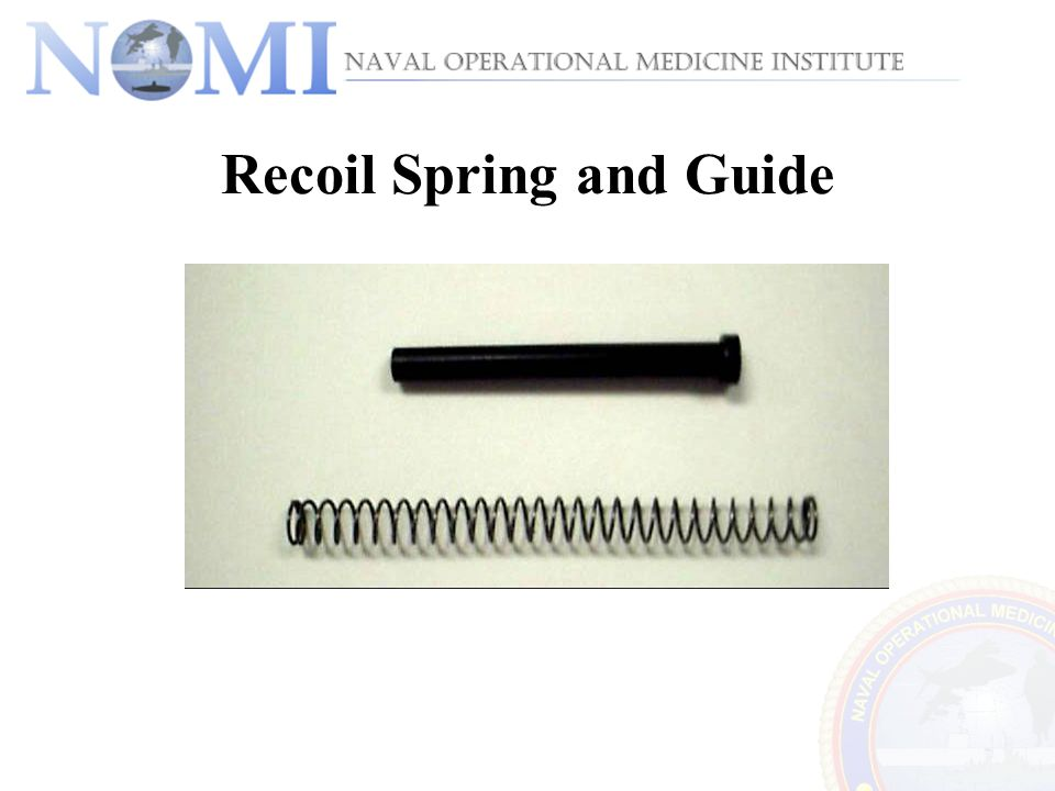 Recoil Spring and Guide