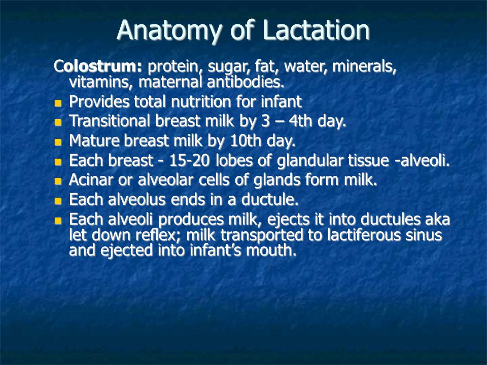 Anatomy of Lactation Colostrum: protein, sugar, fat, water, minerals, vitamins, maternal antibodies.
