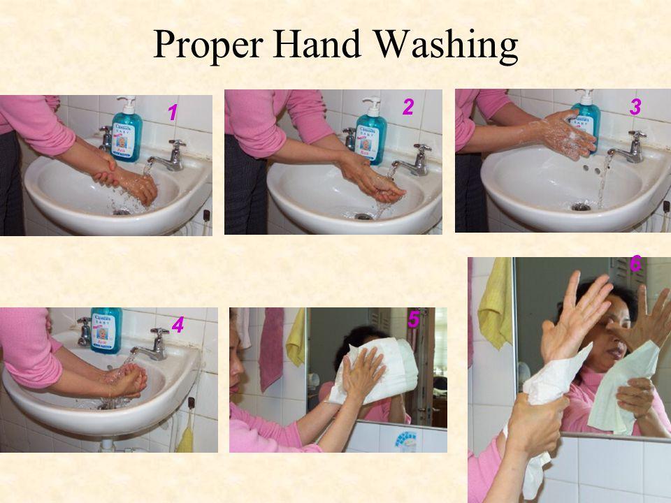 Proper Hand Washing 2 3 1 6 5 4