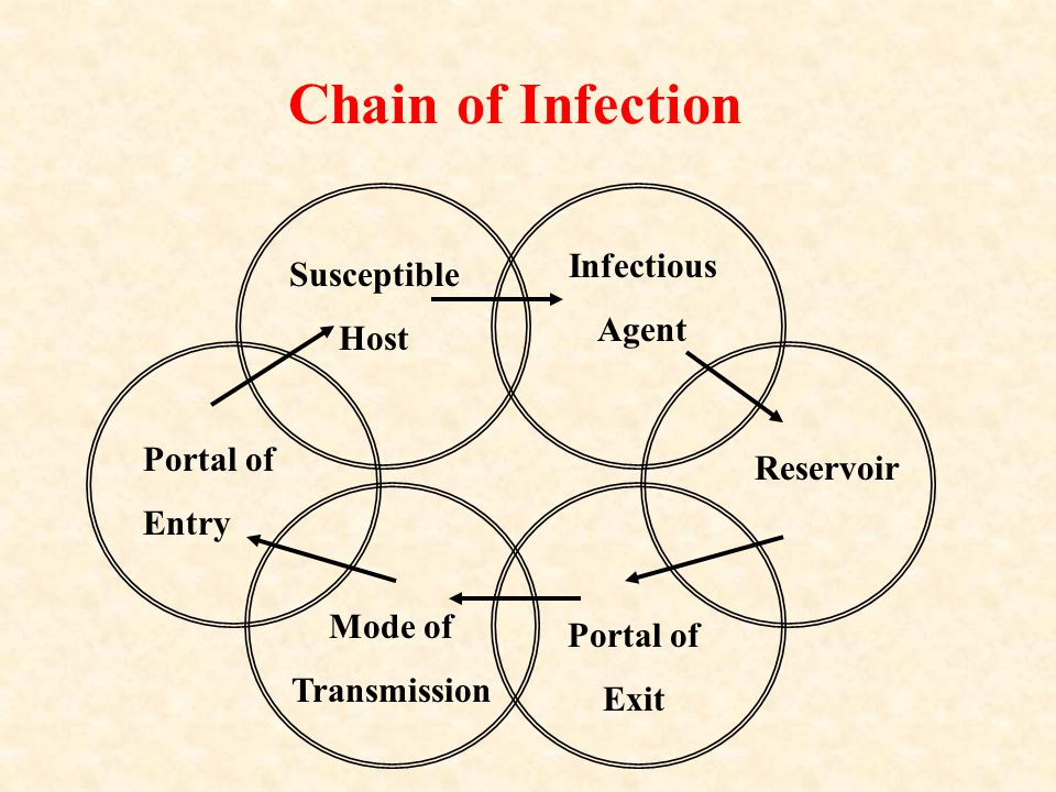 Chain of Infection Infectious Susceptible Agent Host Portal of