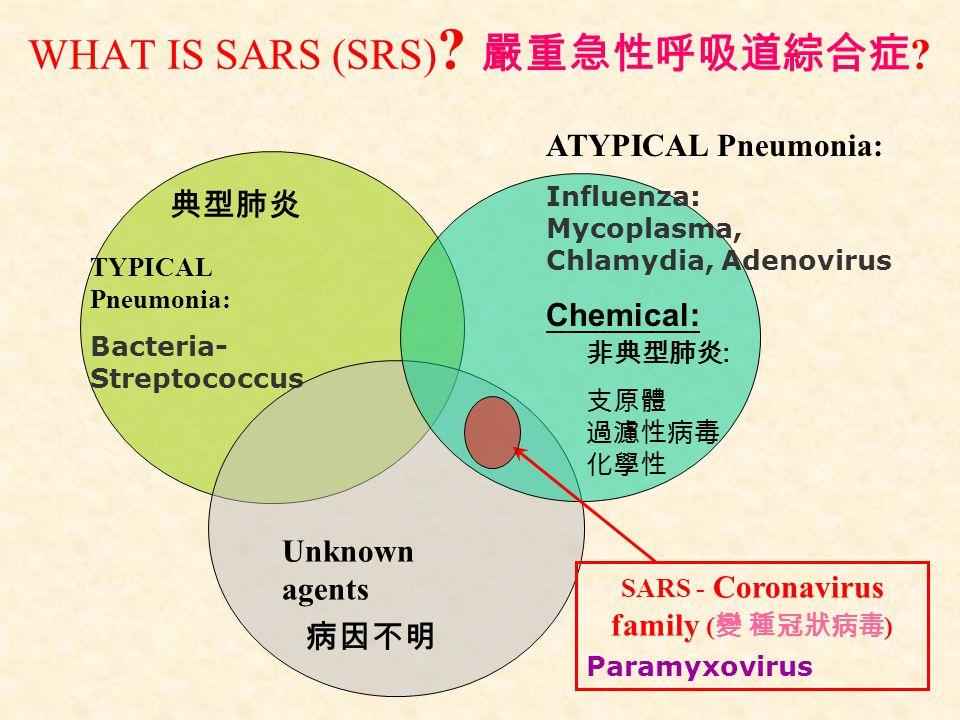 WHAT IS SARS (SRS) 嚴重急性呼吸道綜合症