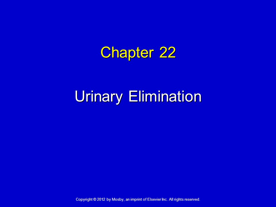 Chapter 22 Urinary Elimination