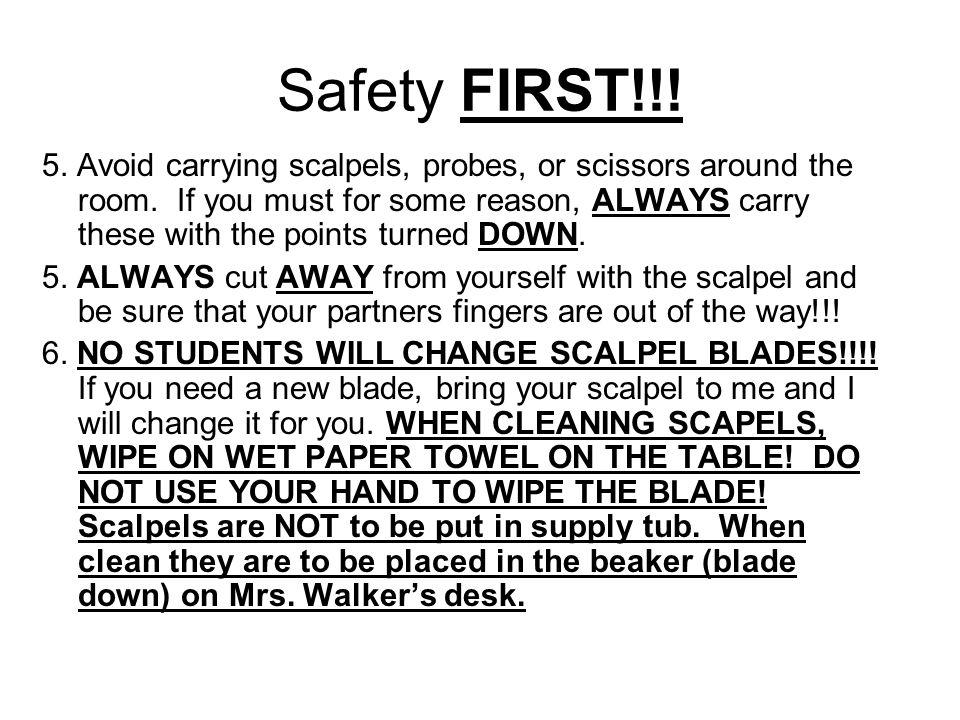 Safety FIRST!!!