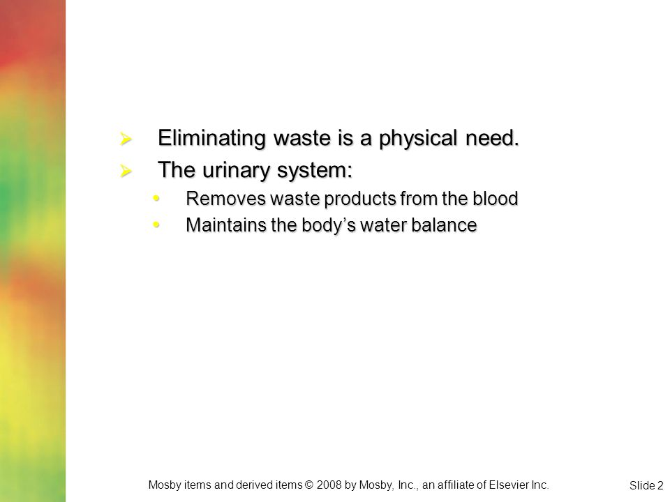 Eliminating waste is a physical need. The urinary system: