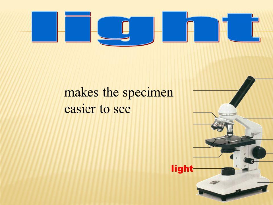 light makes the specimen easier to see light
