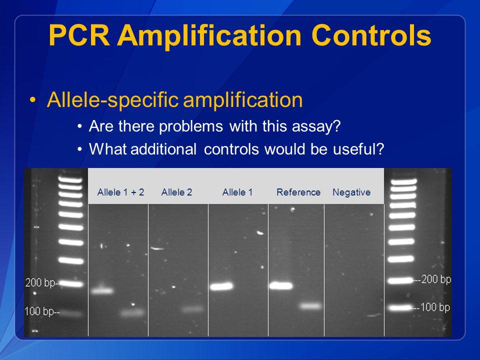 PCR Amplification Controls