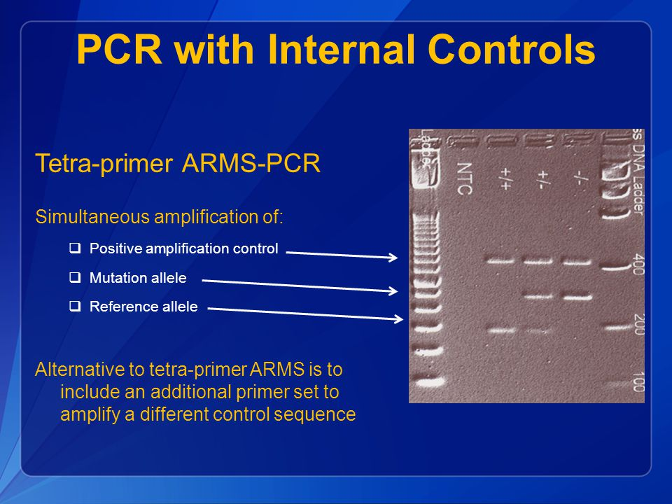 PCR with Internal Controls