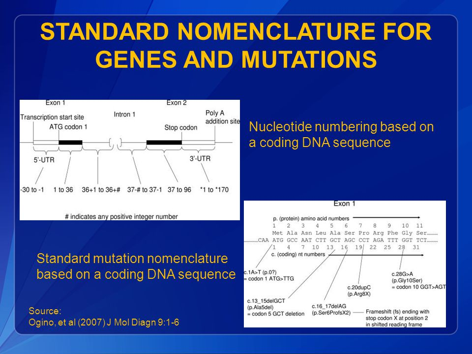 Standard Nomenclature for Genes and Mutations