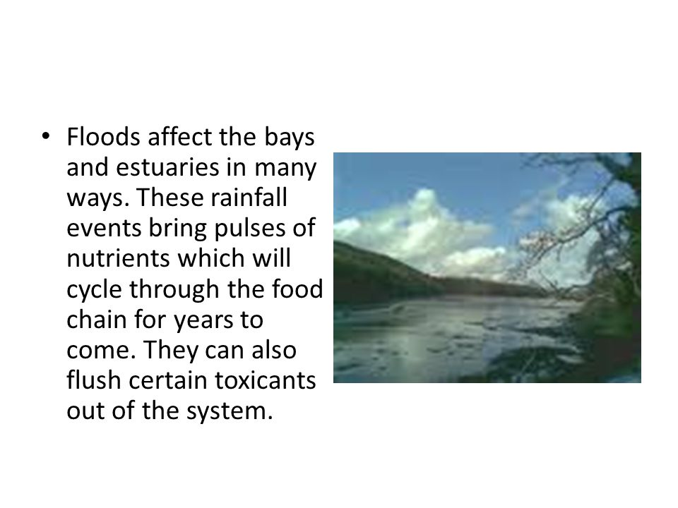 Floods affect the bays and estuaries in many ways