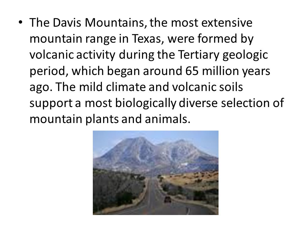 The Davis Mountains, the most extensive mountain range in Texas, were formed by volcanic activity during the Tertiary geologic period, which began around 65 million years ago.