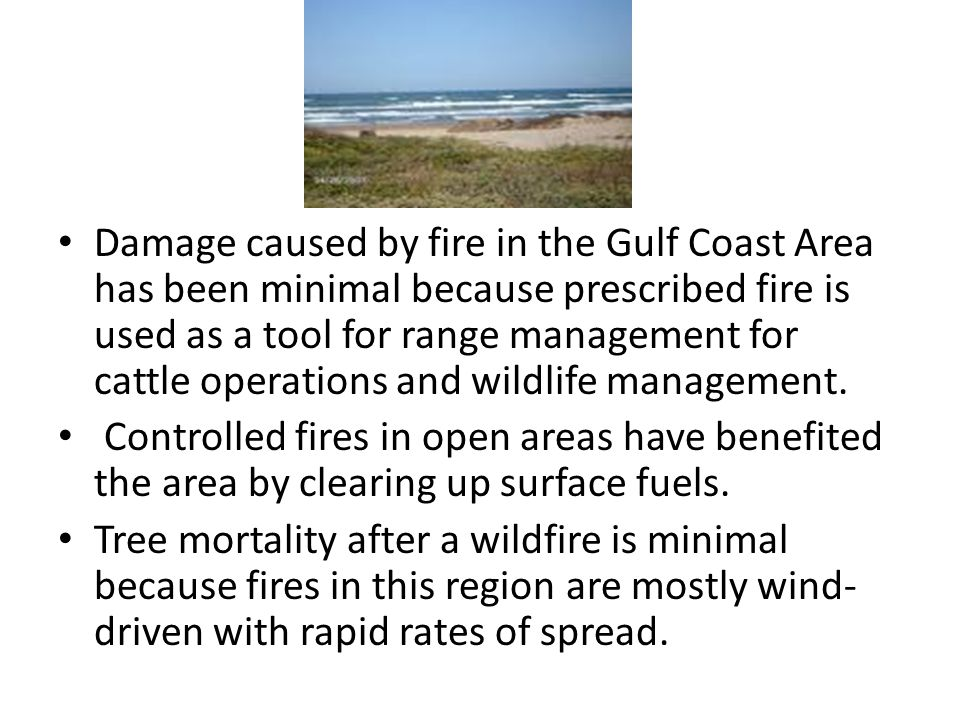 Damage caused by fire in the Gulf Coast Area has been minimal because prescribed fire is used as a tool for range management for cattle operations and wildlife management.
