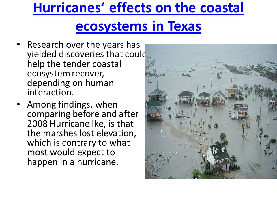 Hurricanes' effects on the coastal ecosystems in Texas