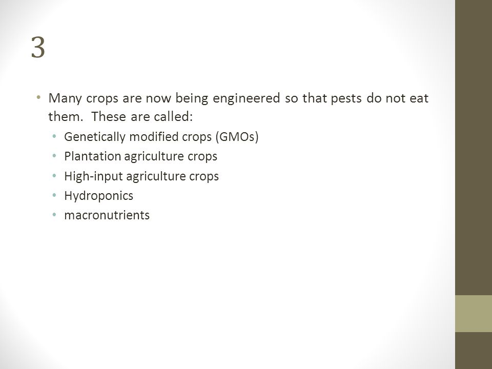 3 Many crops are now being engineered so that pests do not eat them. These are called: Genetically modified crops (GMOs)