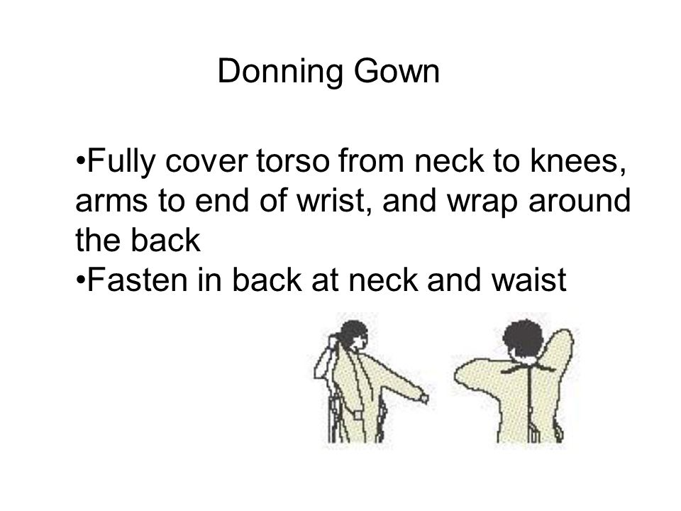 Donning Gown Fully cover torso from neck to knees,