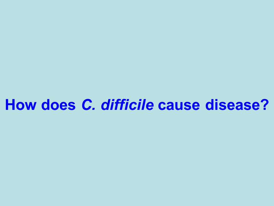 How does C. difficile cause disease