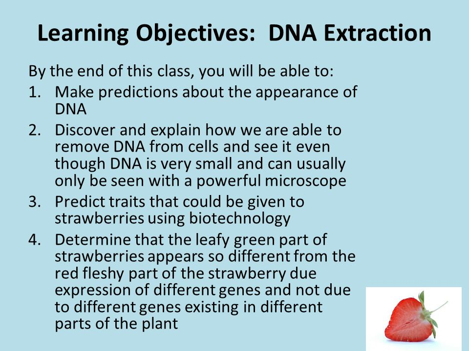 Learning Objectives: DNA Extraction