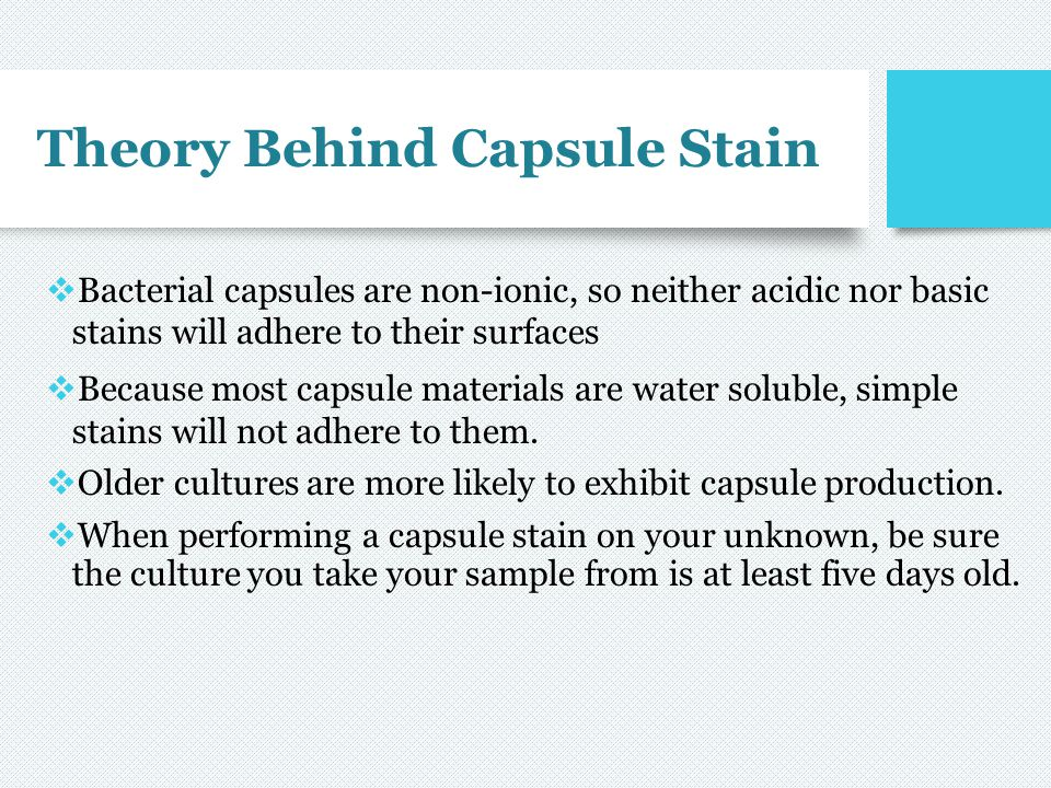 Theory Behind Capsule Stain
