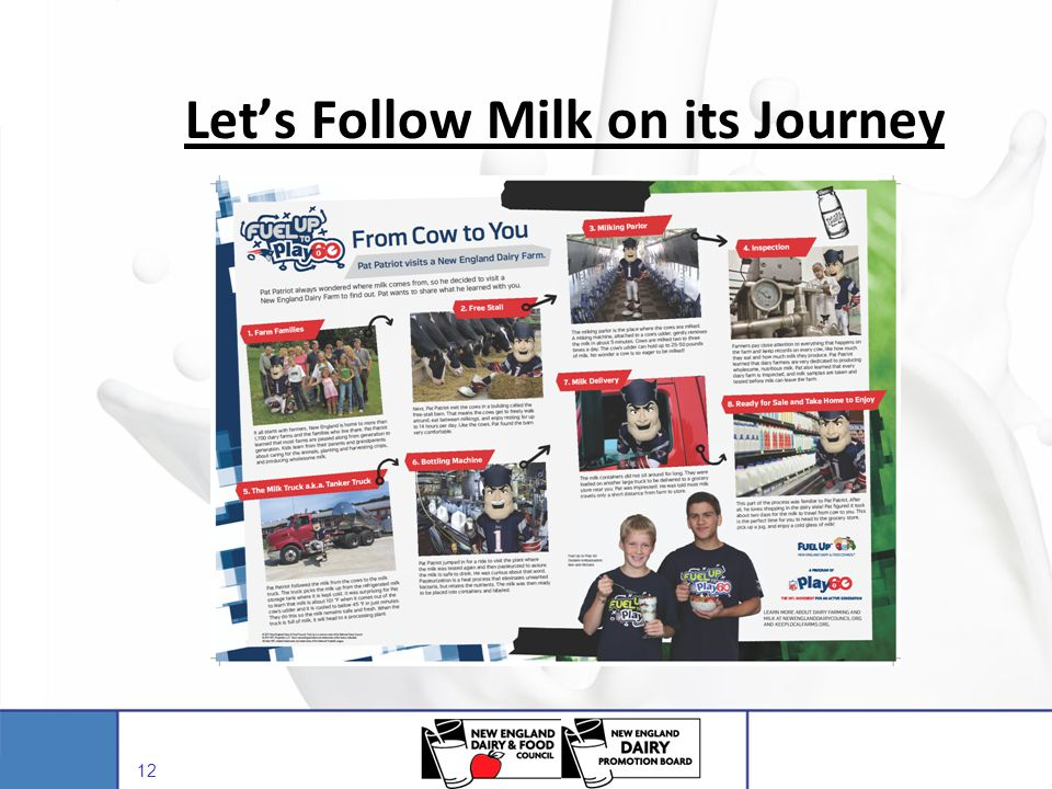 Let's Follow Milk on its Journey
