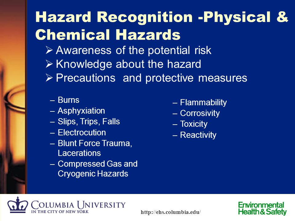 Hazard Recognition -Physical & Chemical Hazards