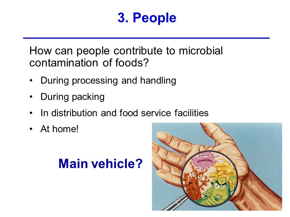 3. People How can people contribute to microbial contamination of foods During processing and handling.