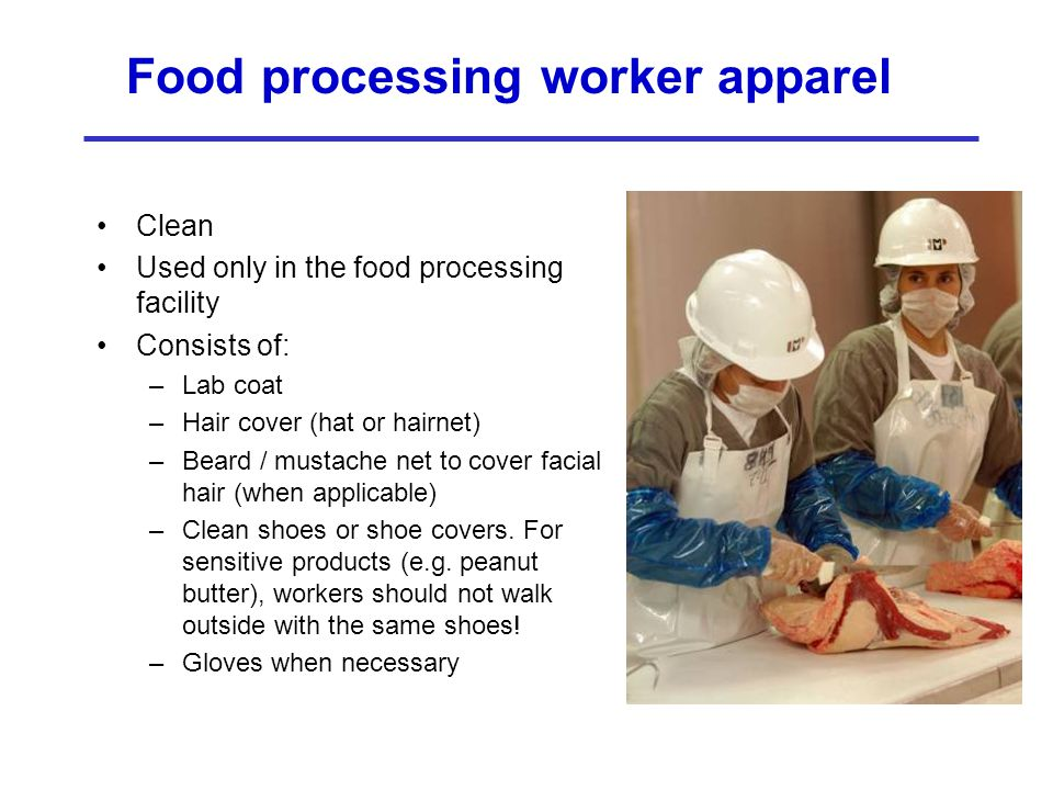 Food processing worker apparel
