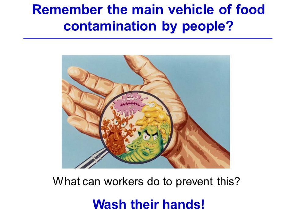 Remember the main vehicle of food contamination by people