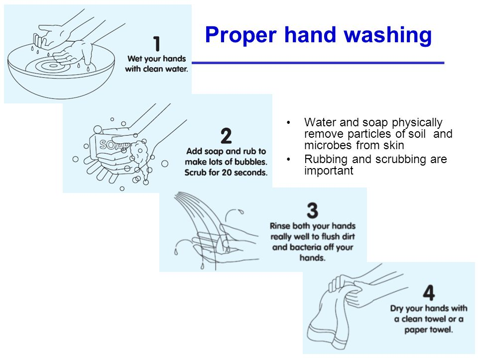 Proper hand washing Water and soap physically remove particles of soil and microbes from skin.