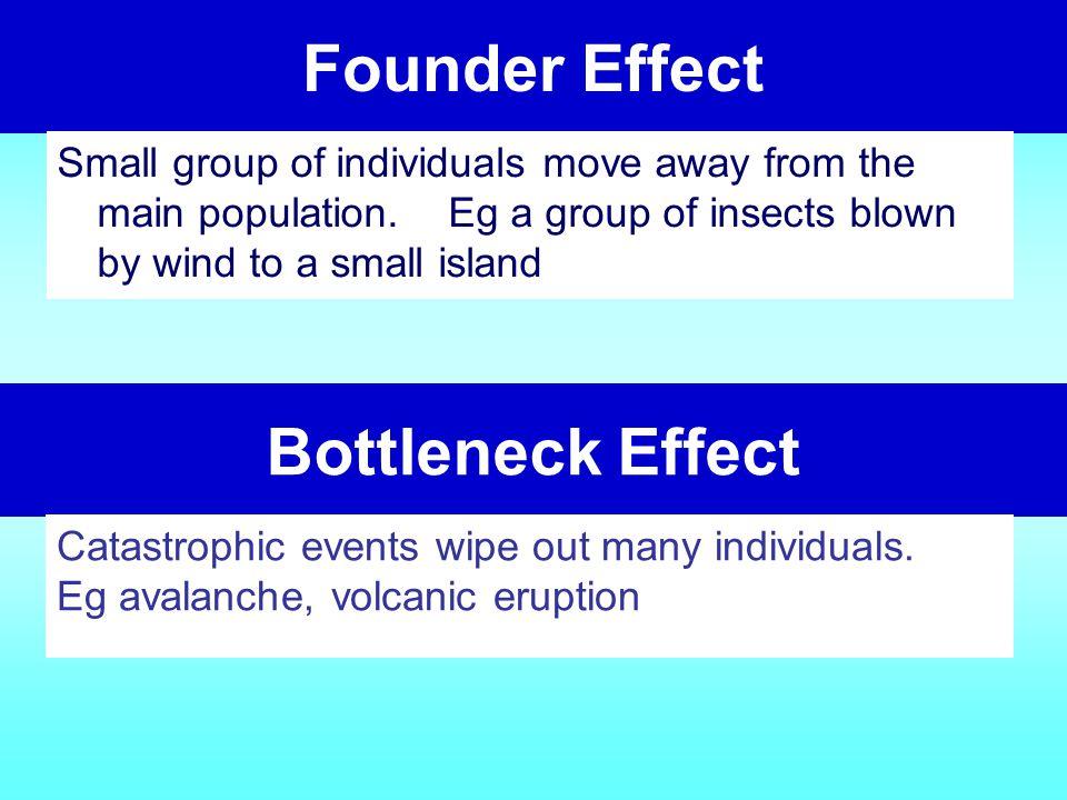 Founder Effect Bottleneck Effect