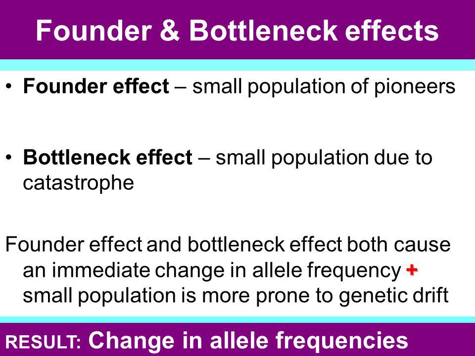 Founder & Bottleneck effects