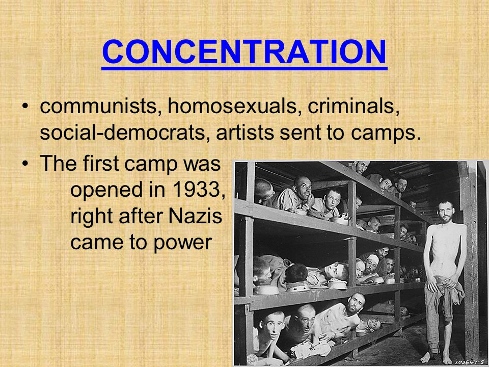 CONCENTRATION communists, homosexuals, criminals, social-democrats, artists sent to camps.