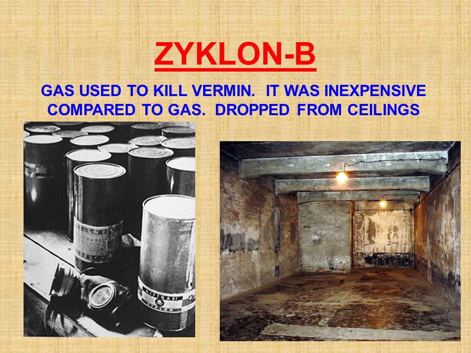 ZYKLON-B GAS USED TO KILL VERMIN. IT WAS INEXPENSIVE COMPARED TO GAS. DROPPED FROM CEILINGS