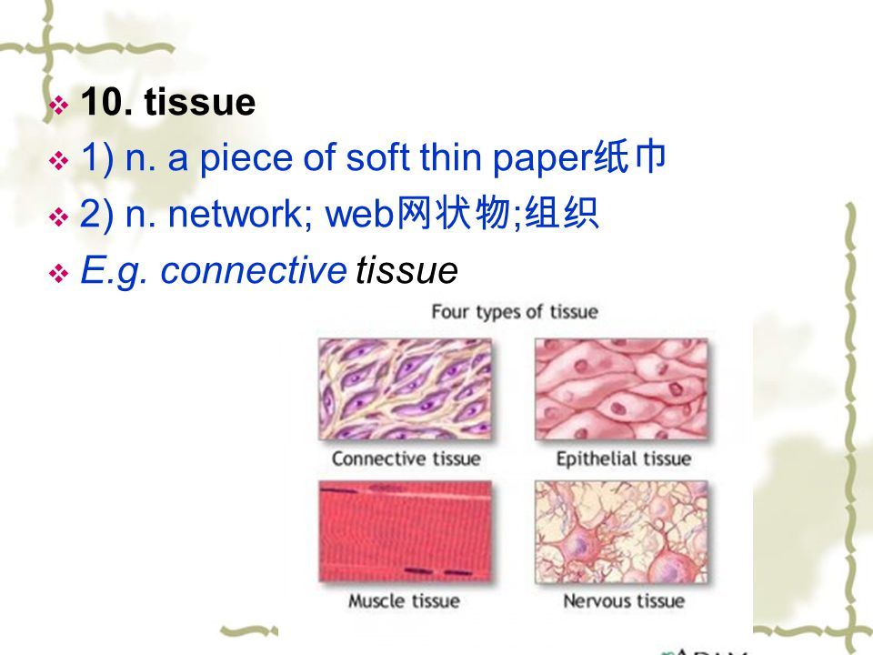 10. tissue 1) n. a piece of soft thin paper纸巾 2) n. network; web网状物;组织 E.g. connective tissue