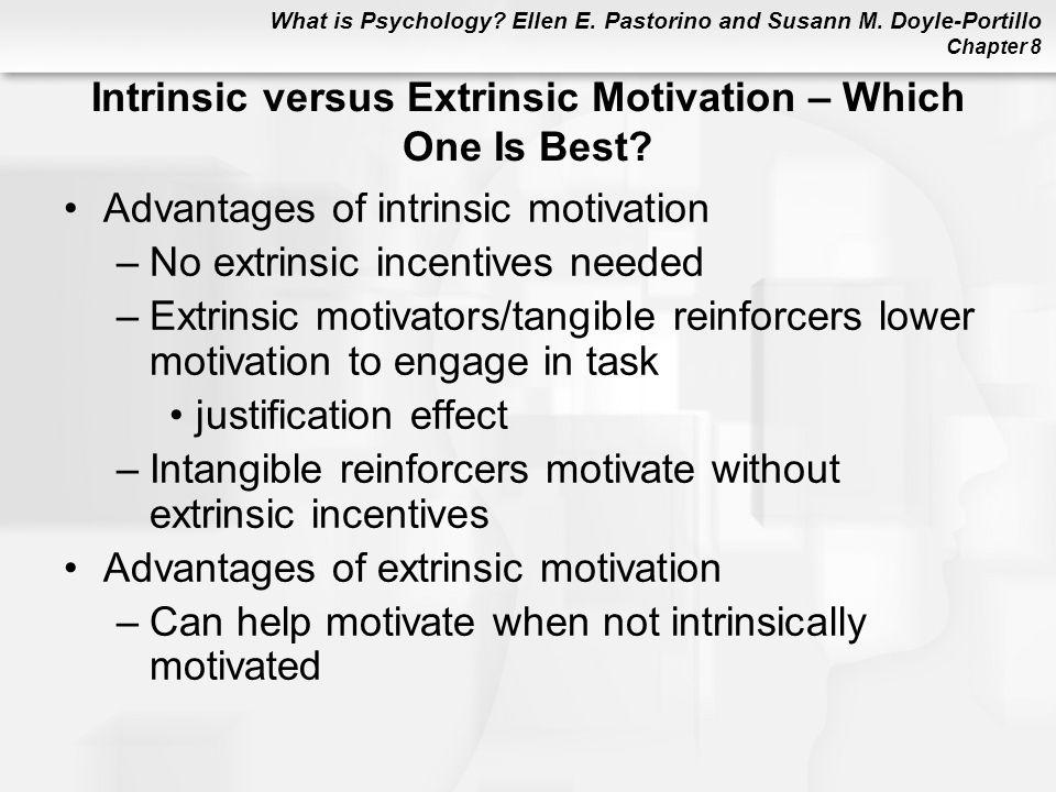 Intrinsic versus Extrinsic Motivation – Which One Is Best