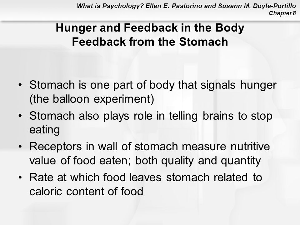 Hunger and Feedback in the Body Feedback from the Stomach