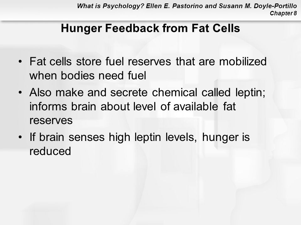 Hunger Feedback from Fat Cells