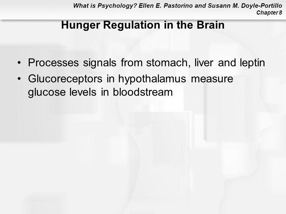 Hunger Regulation in the Brain