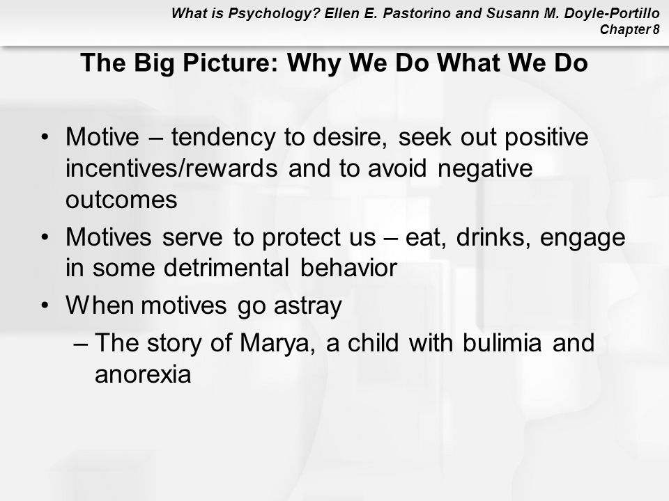 The Big Picture: Why We Do What We Do