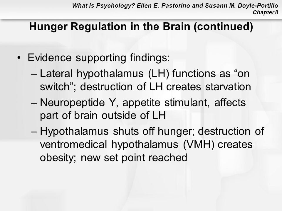 Hunger Regulation in the Brain (continued)