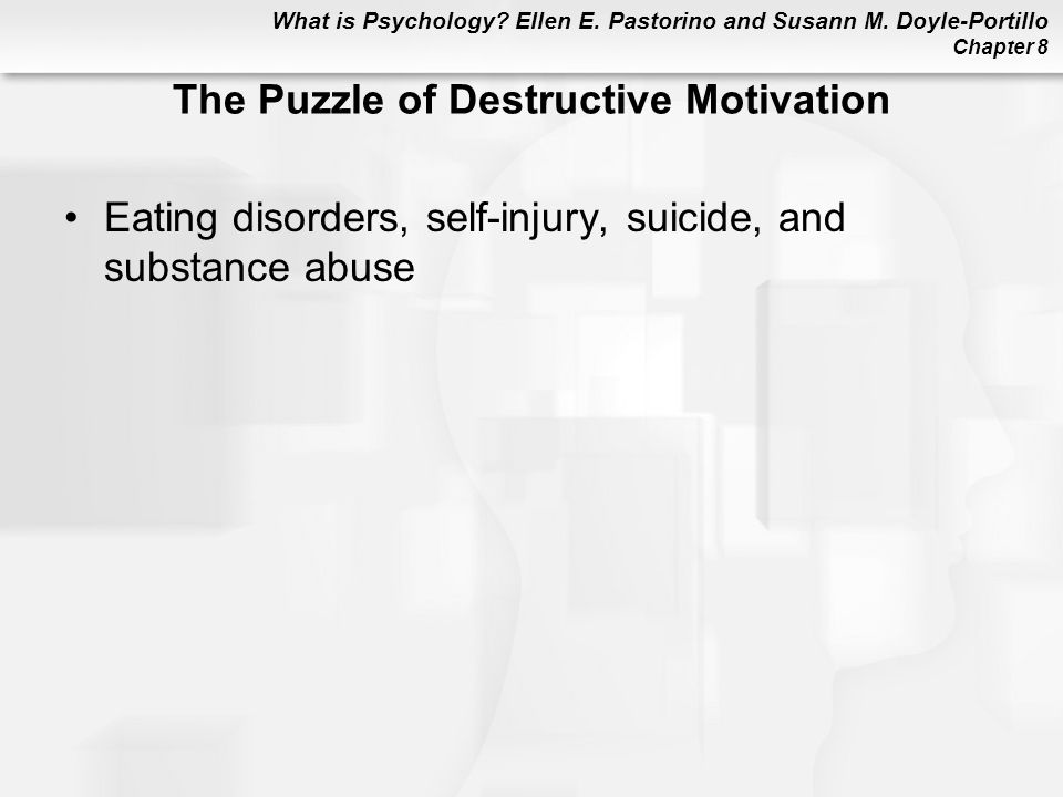 The Puzzle of Destructive Motivation