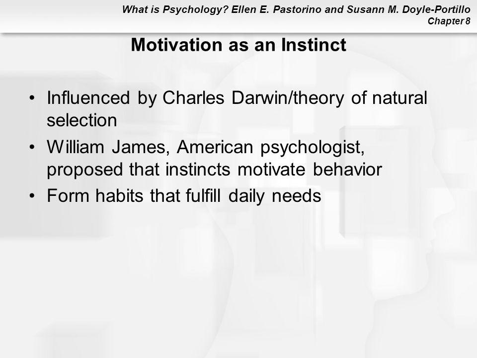 Motivation as an Instinct