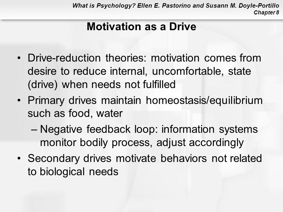 Motivation as a Drive