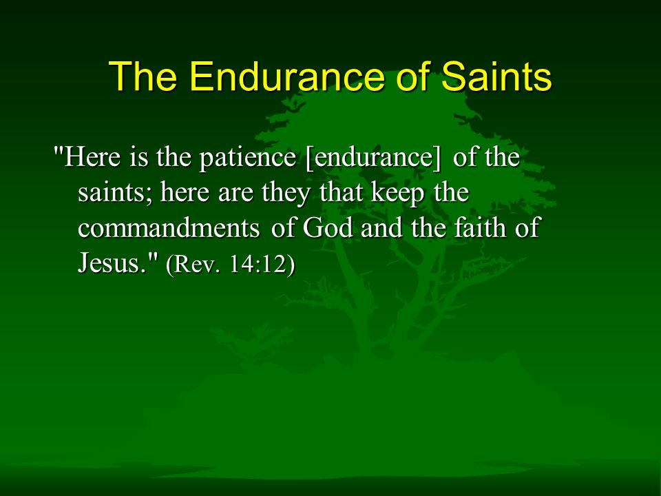 The Endurance of Saints