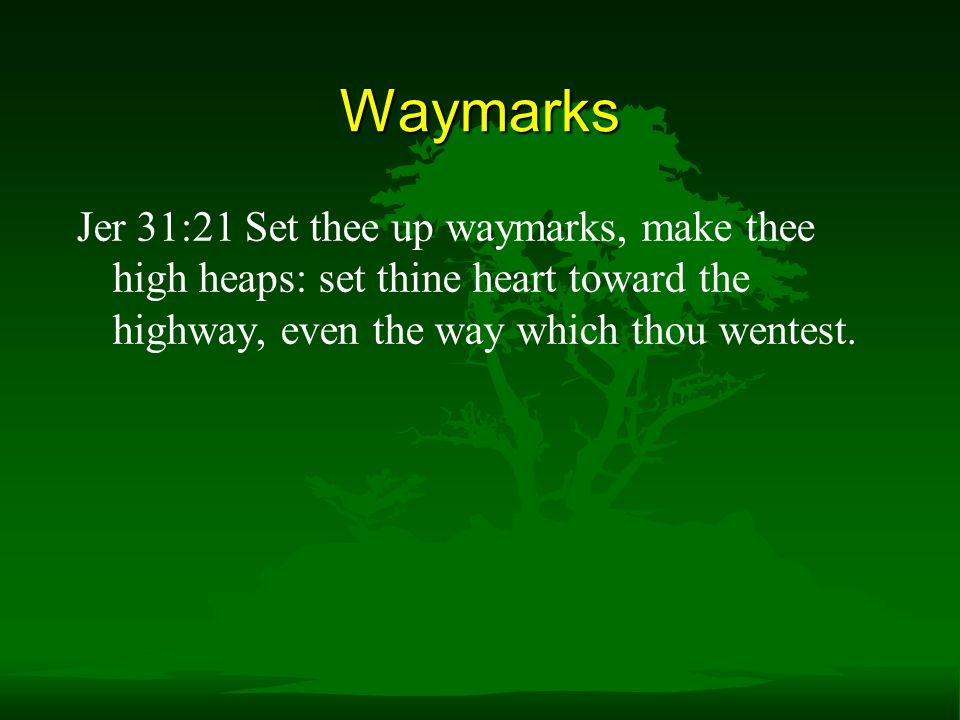 Waymarks Jer 31:21 Set thee up waymarks, make thee high heaps: set thine heart toward the highway, even the way which thou wentest.