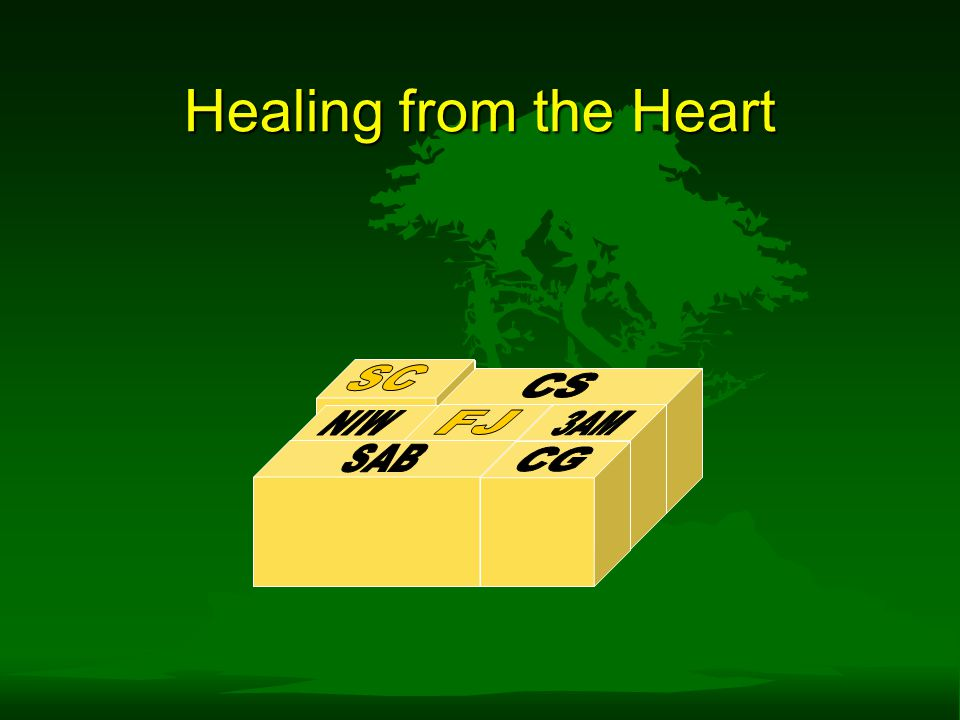 Healing from the Heart SC SC CS NIW FJ 3AM SAB CG