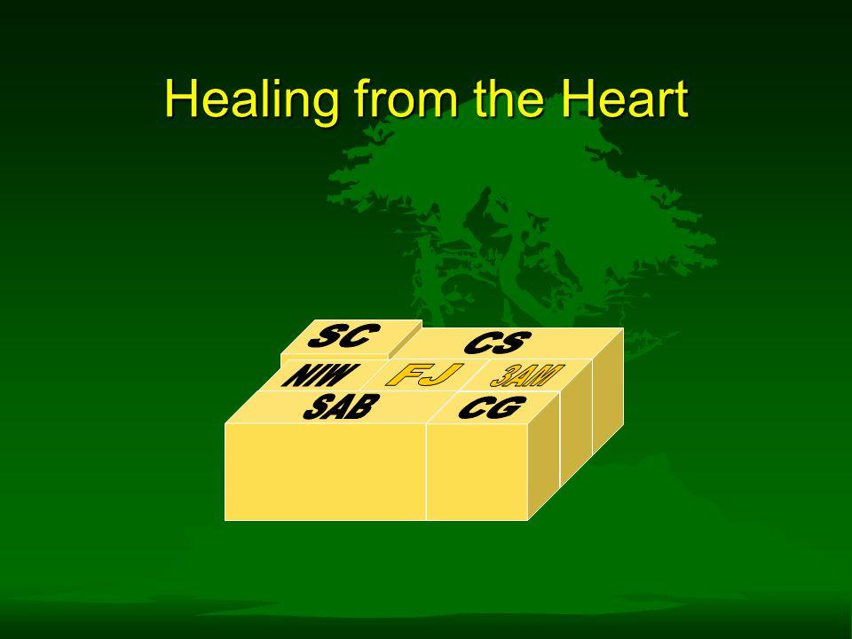 Healing from the Heart SC CS NIW FJ 3AM 3AM SAB CG